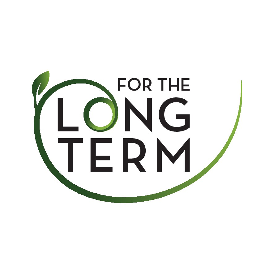 Visionary logo for USA finance nonprofit focused on long term sustainability