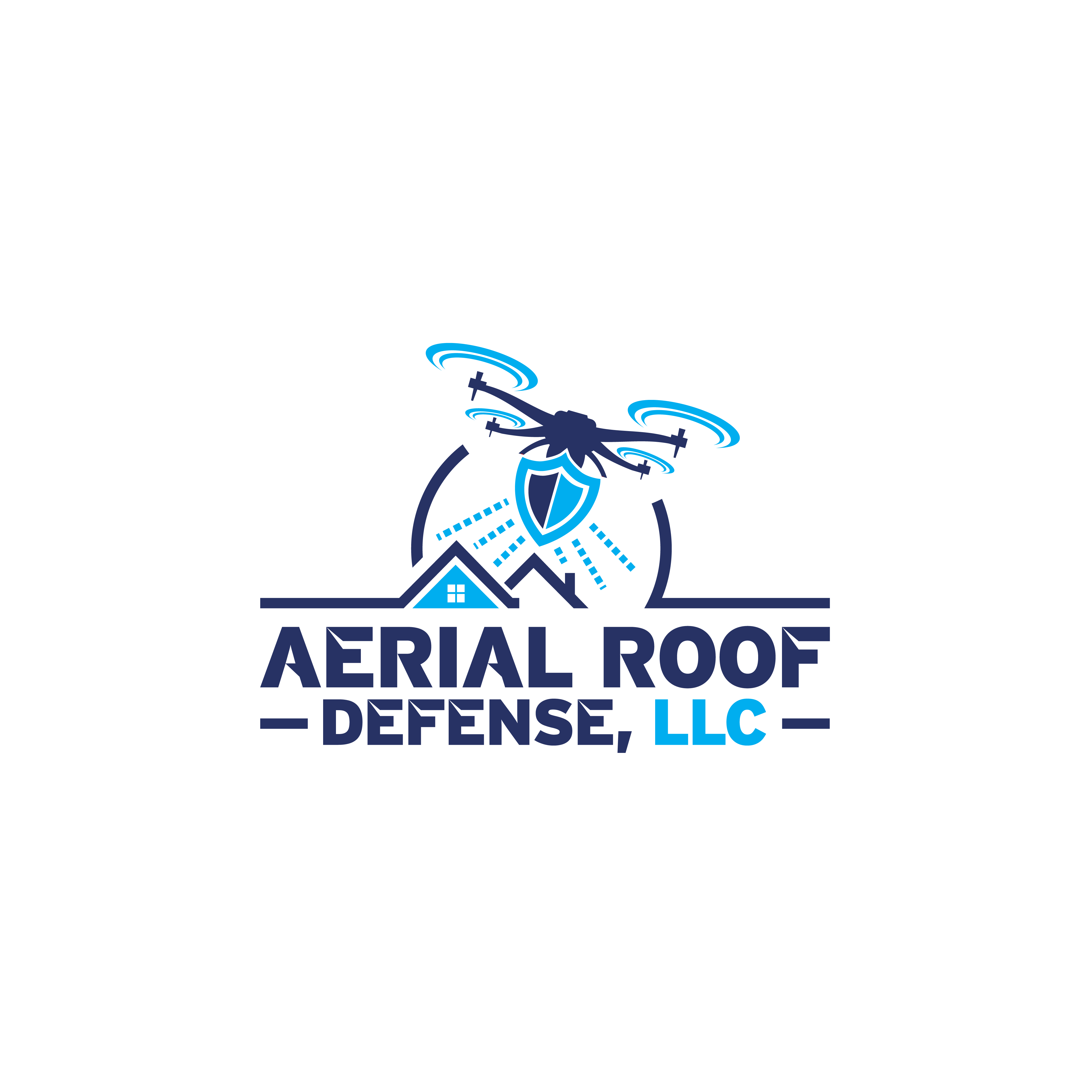 Create logo for unique service industry that utilizes Drone technology.