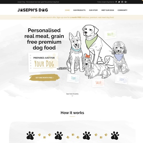 Joseph's Dog website design