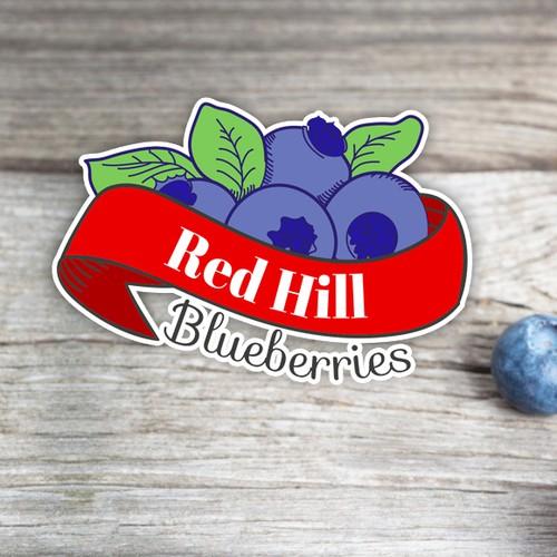 Blueberries Logo - Color variation