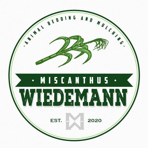 Miscanthus Wiedemann