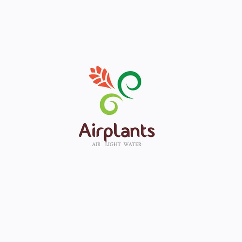Create the next logo for Air Planet