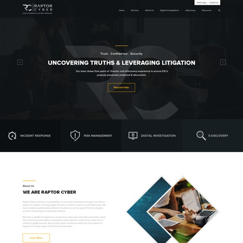 Web design for Raptor Cyber