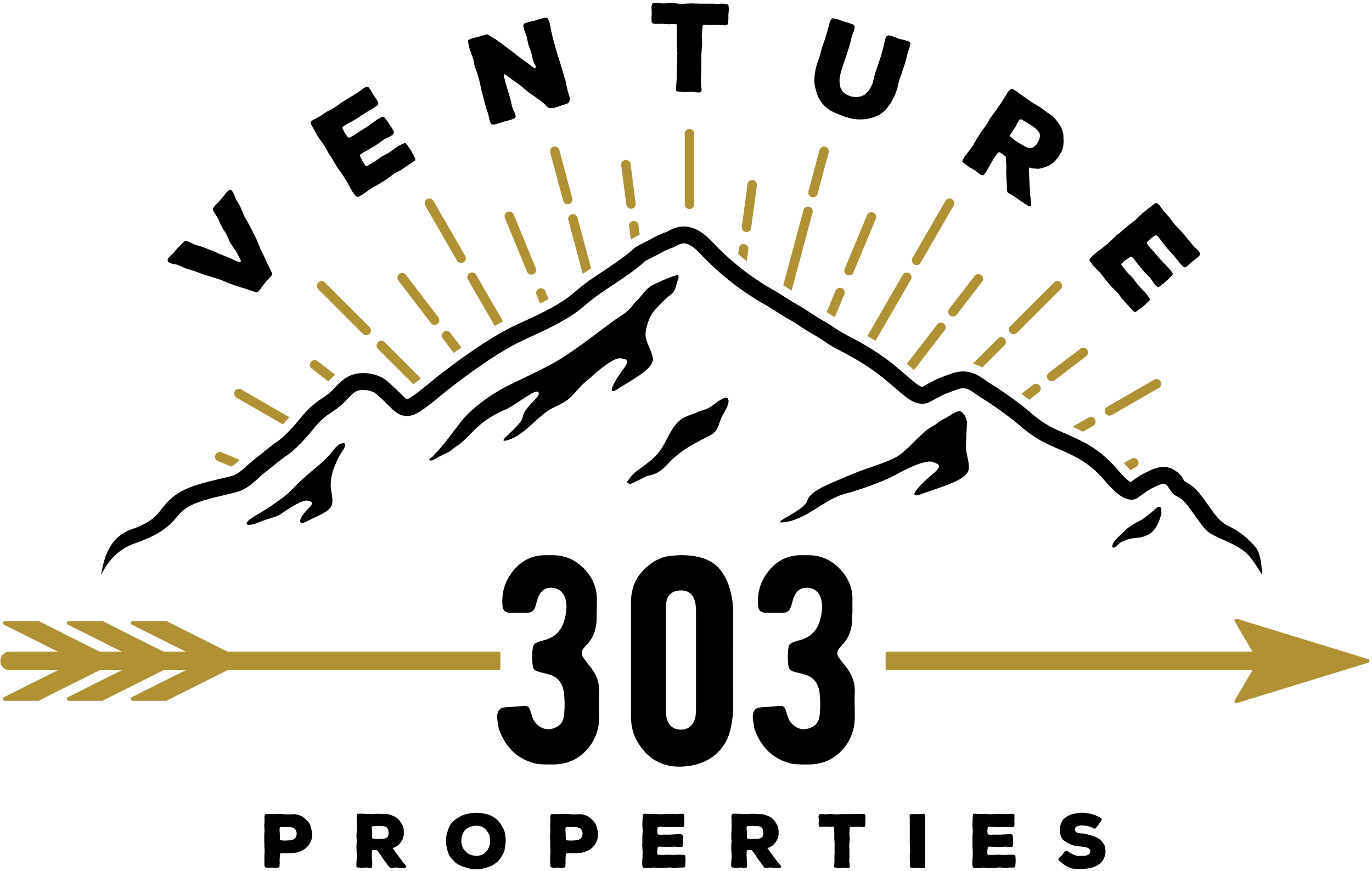 Clean Cool Venture 303 Logo