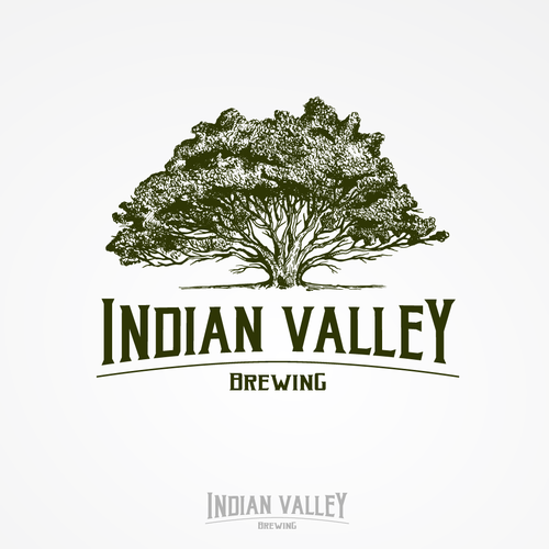 INDIAN VALLEY