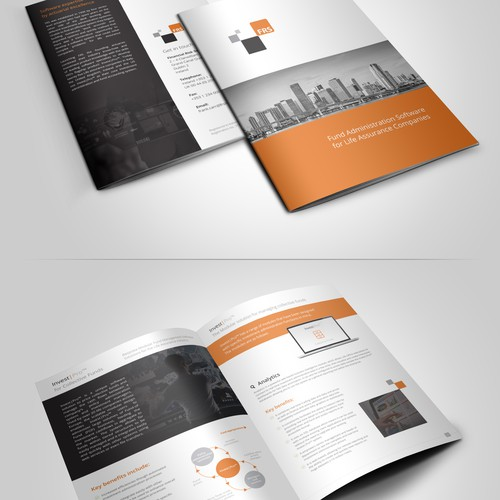 Eye catching brochure needed for FRS - high tech financial services company