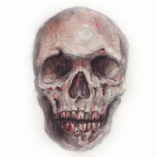 fresh skull