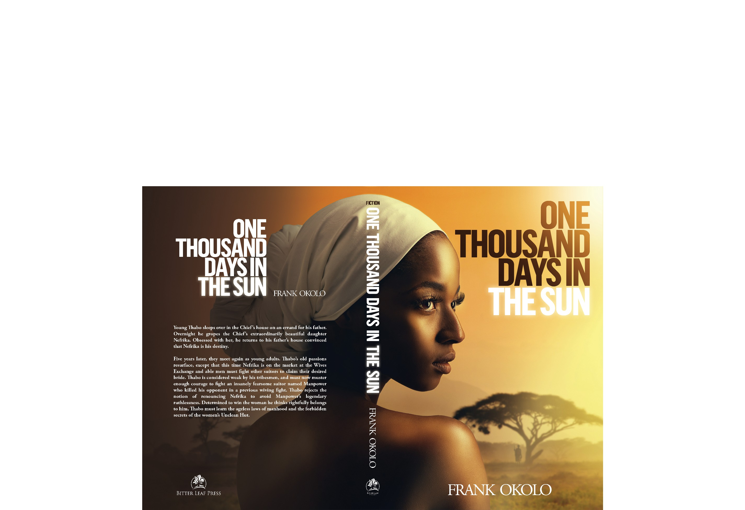 Create an attention-grabbing book cover for my mainstream novel One Thousand Days in The Sun.