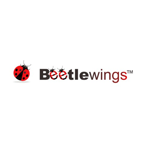 Create a logo for Beetlewings. We named it, now you design it and we'll all love it.