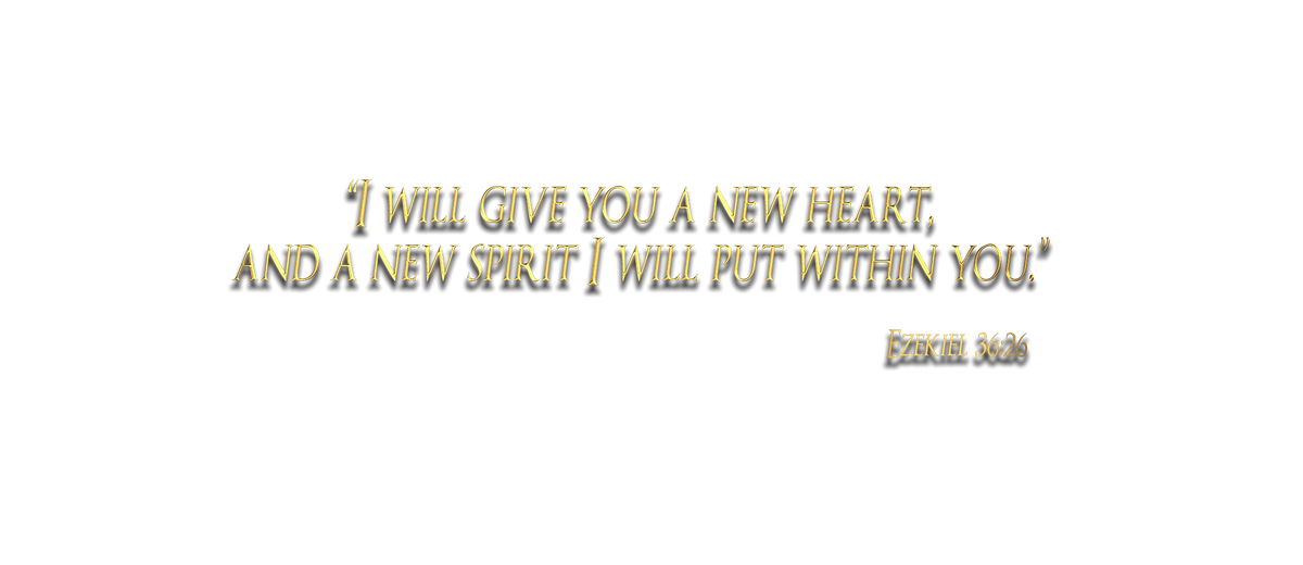 Sacred Heart T Shirt Illusion