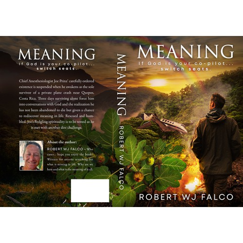 Book cover for the novel MEANING
