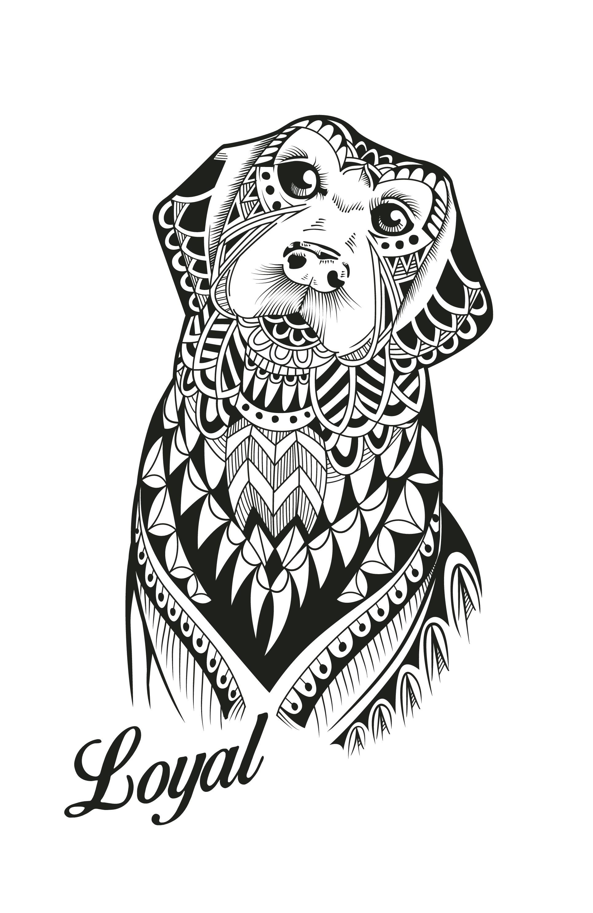 Dog - Illustration