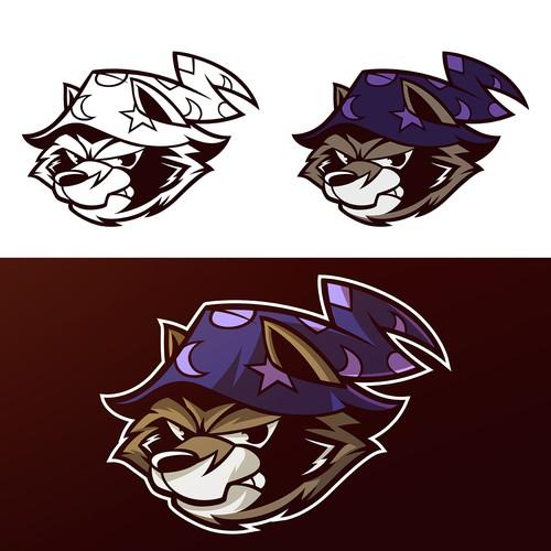 A raccoon wearing a wizard hat