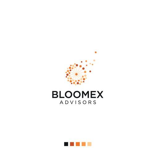 Bloomes advisors