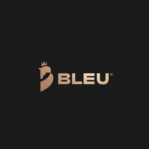 Bleu Logo Concept