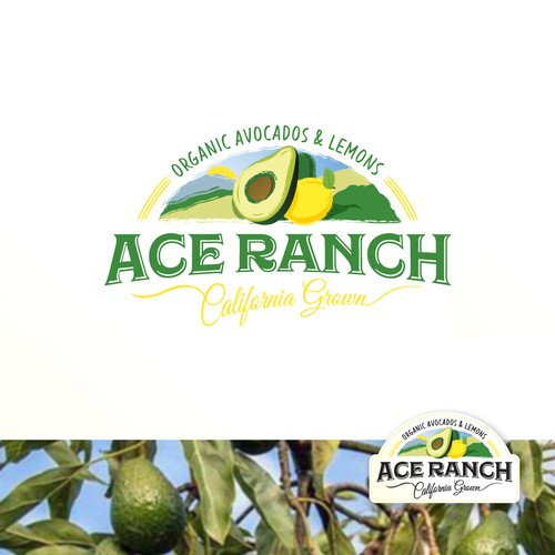 Ace Ranch