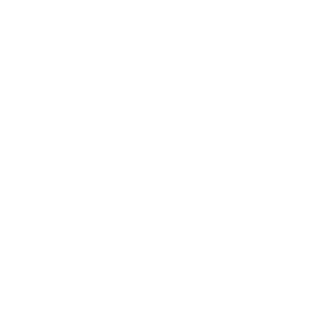 diplomats logo options