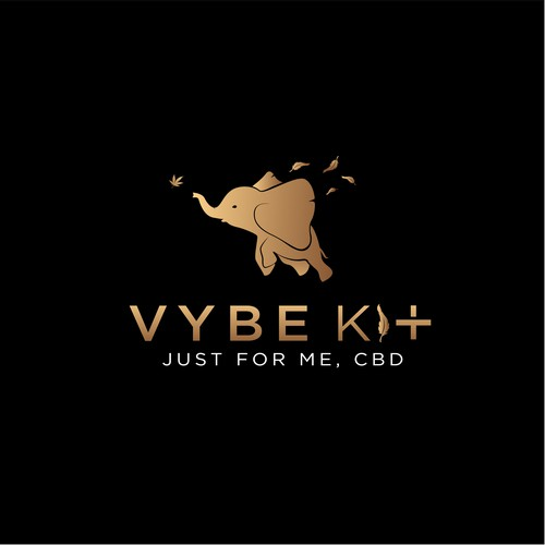 Vybe Kit