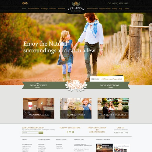 Fergusen website theme design