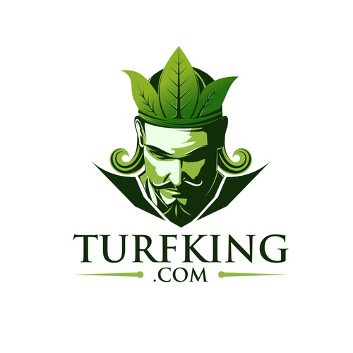 Help Turf King with a new logo