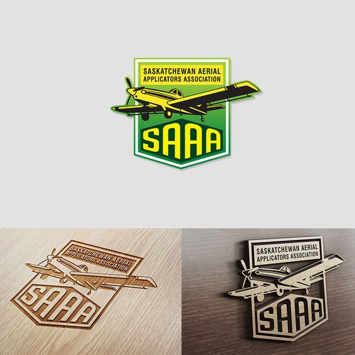 Create a new logo for the SAAA!