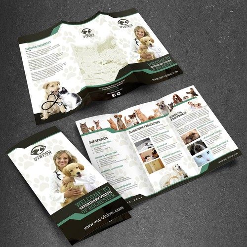 Design a brochure to help Veterinary Vision help save pet vision