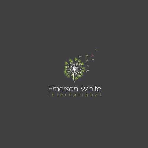 "Logo for ""Emerson White international"""
