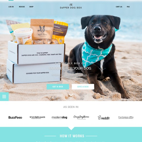Web Design Concept for The Dapper Dog Box