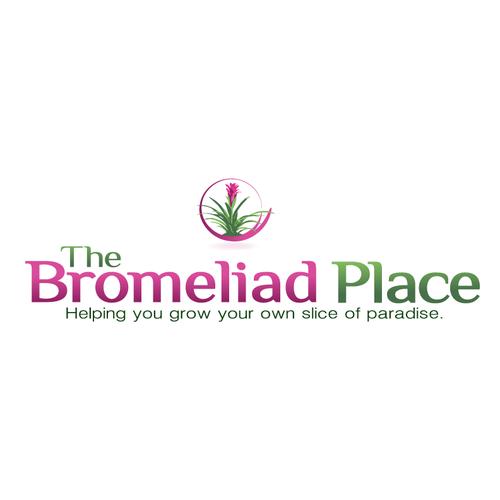 The Bromeliad Place needs a new logo