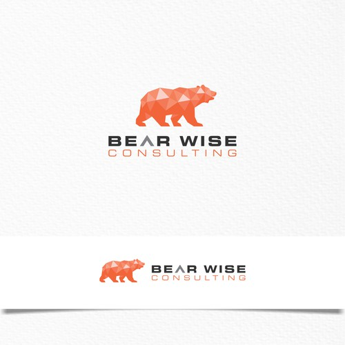 Bear Wise Consulting