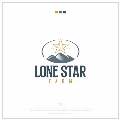 Lone Star Brand Concept
