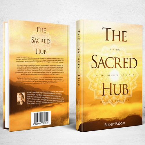 Book Cover for The Sacred Hub