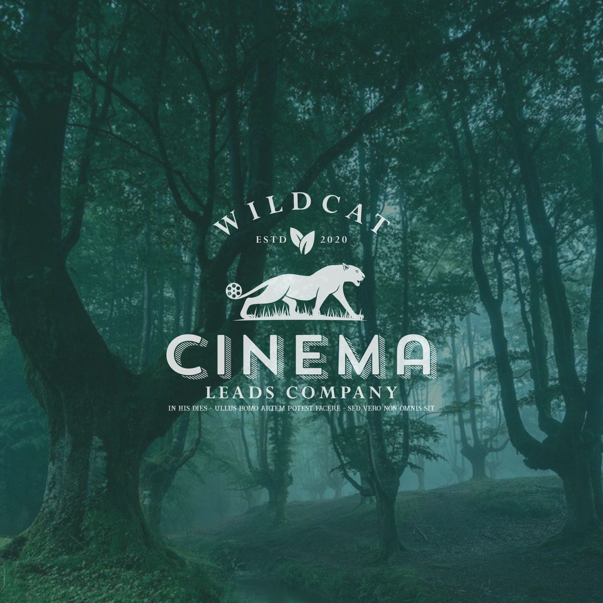 Wildcat Cinema Leads