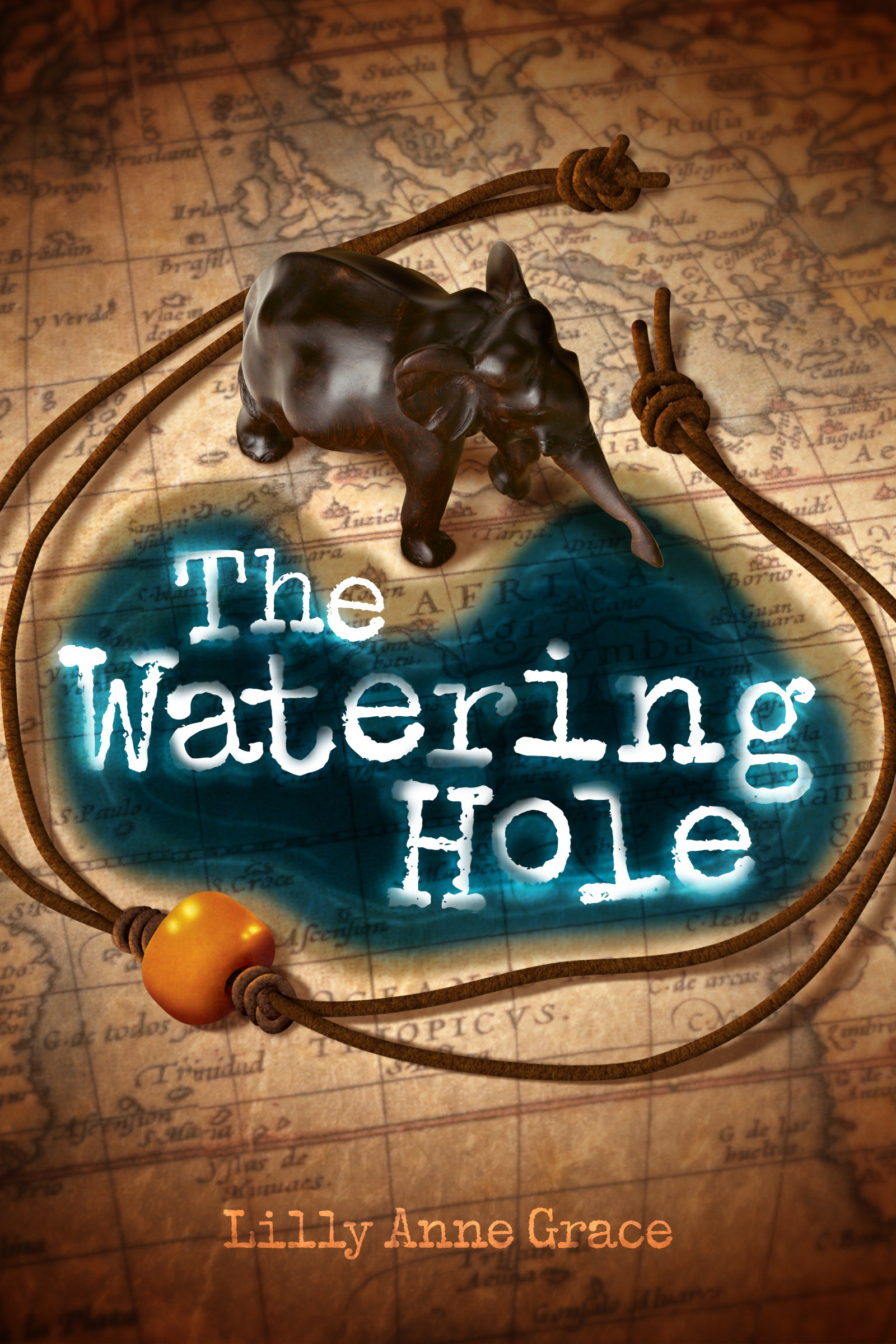 THE WATERING HOLE : Create a Young Adult Fiction Book Cover and E Book Cover design.