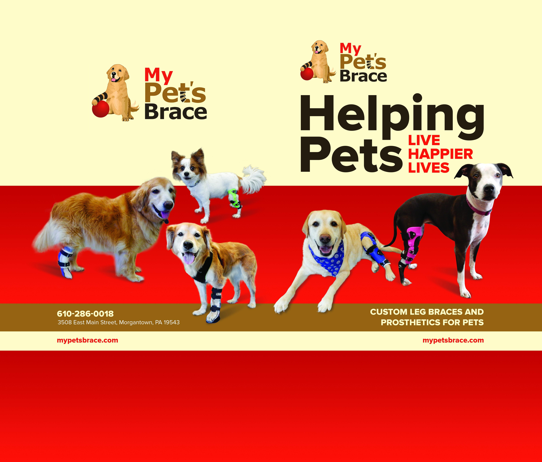 Create a Pocket Folder for My Pet's Brace - Must Love Dogs!