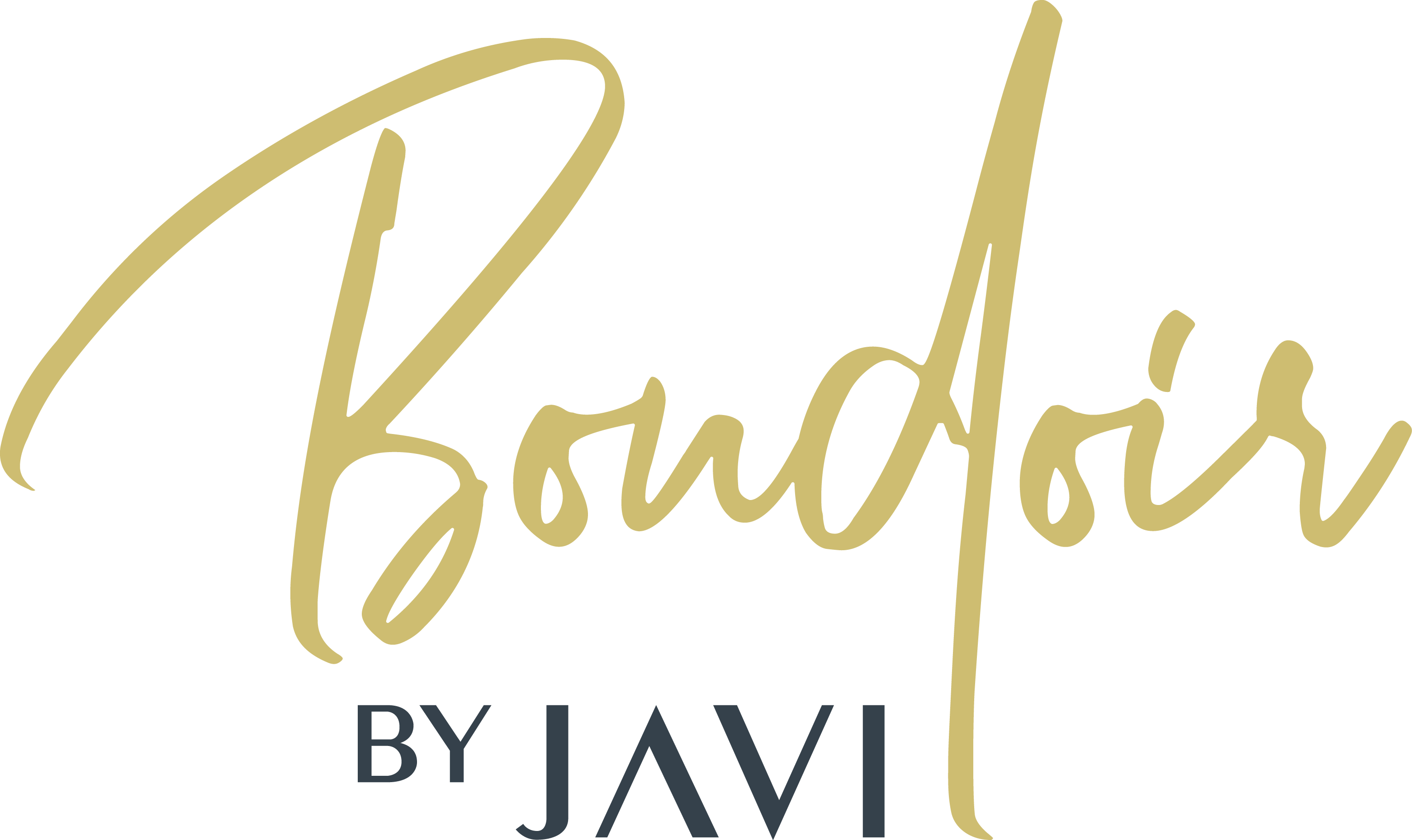 Boudoir Photographer looking for a Modern Classy Logo