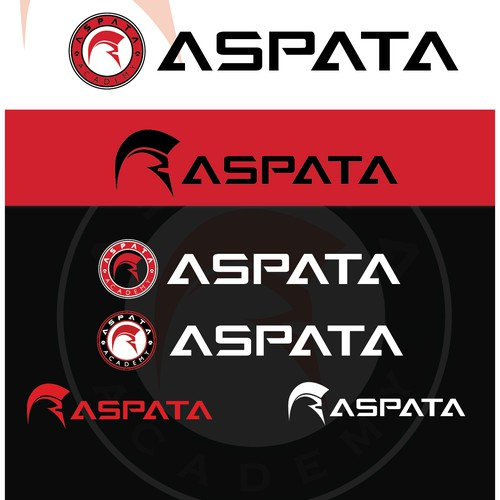 Create Powerful Spartan influenced Logo for cutting edge fitness training academy