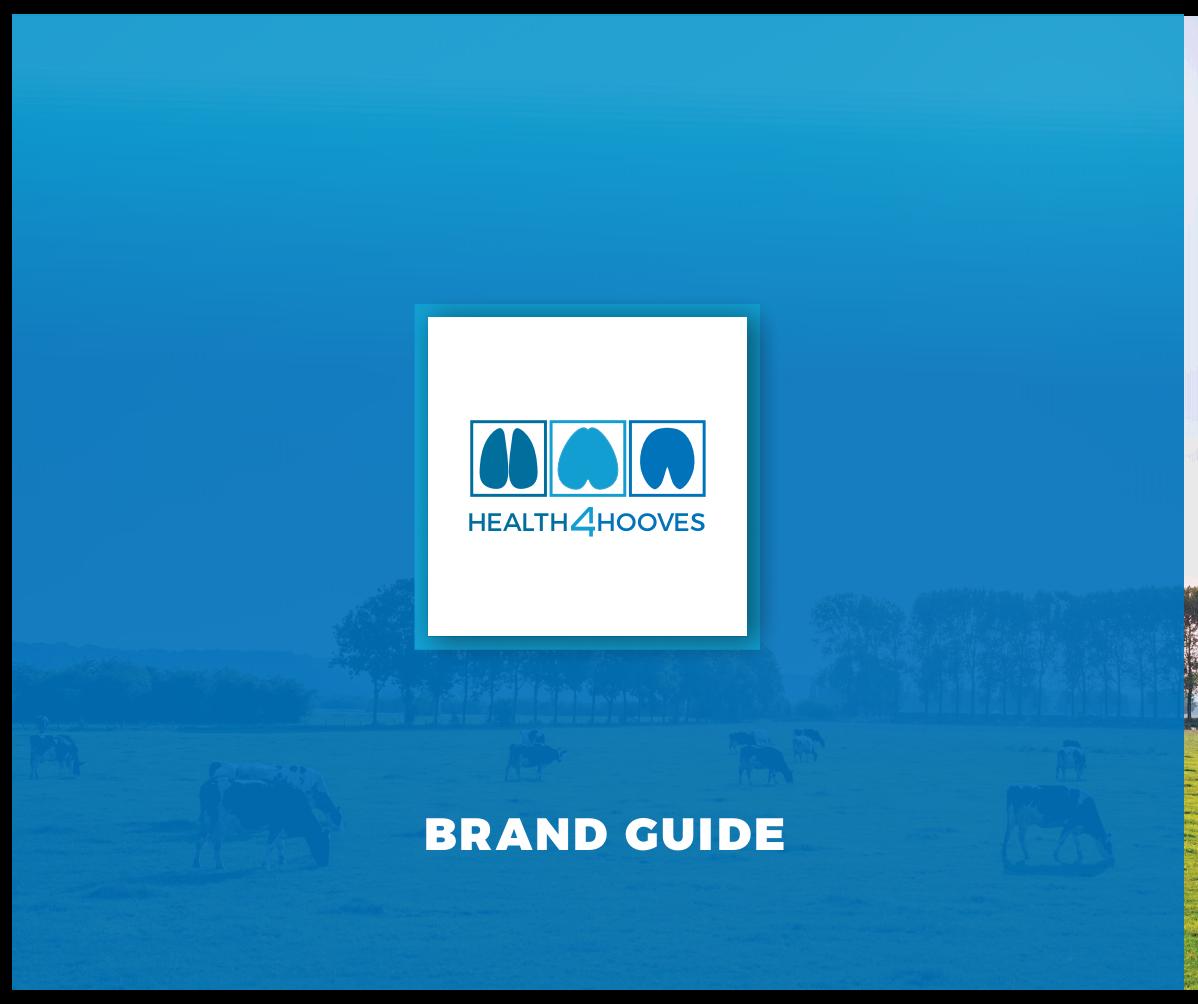 Brand quidelines