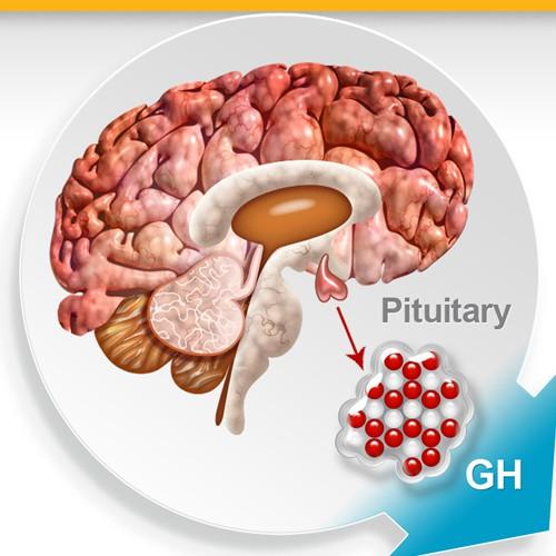 Creative illustration for biotechnology company