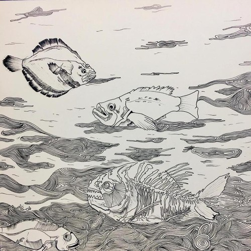 Fishes Drawing Illustration