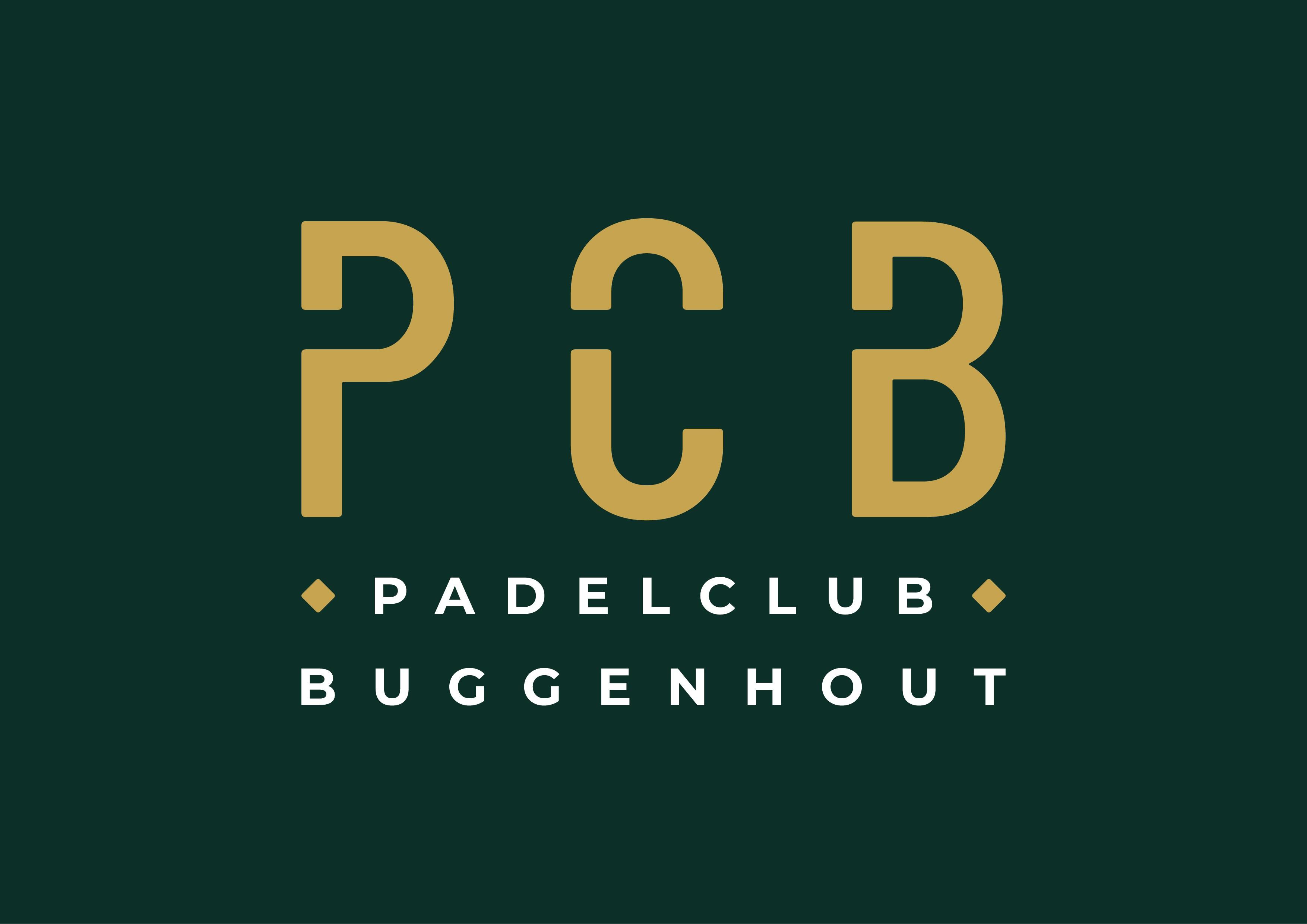 Design a logo for a new padel club