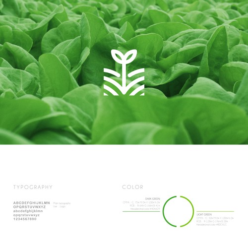 Logo that defines the Root of Hydroponic Technology