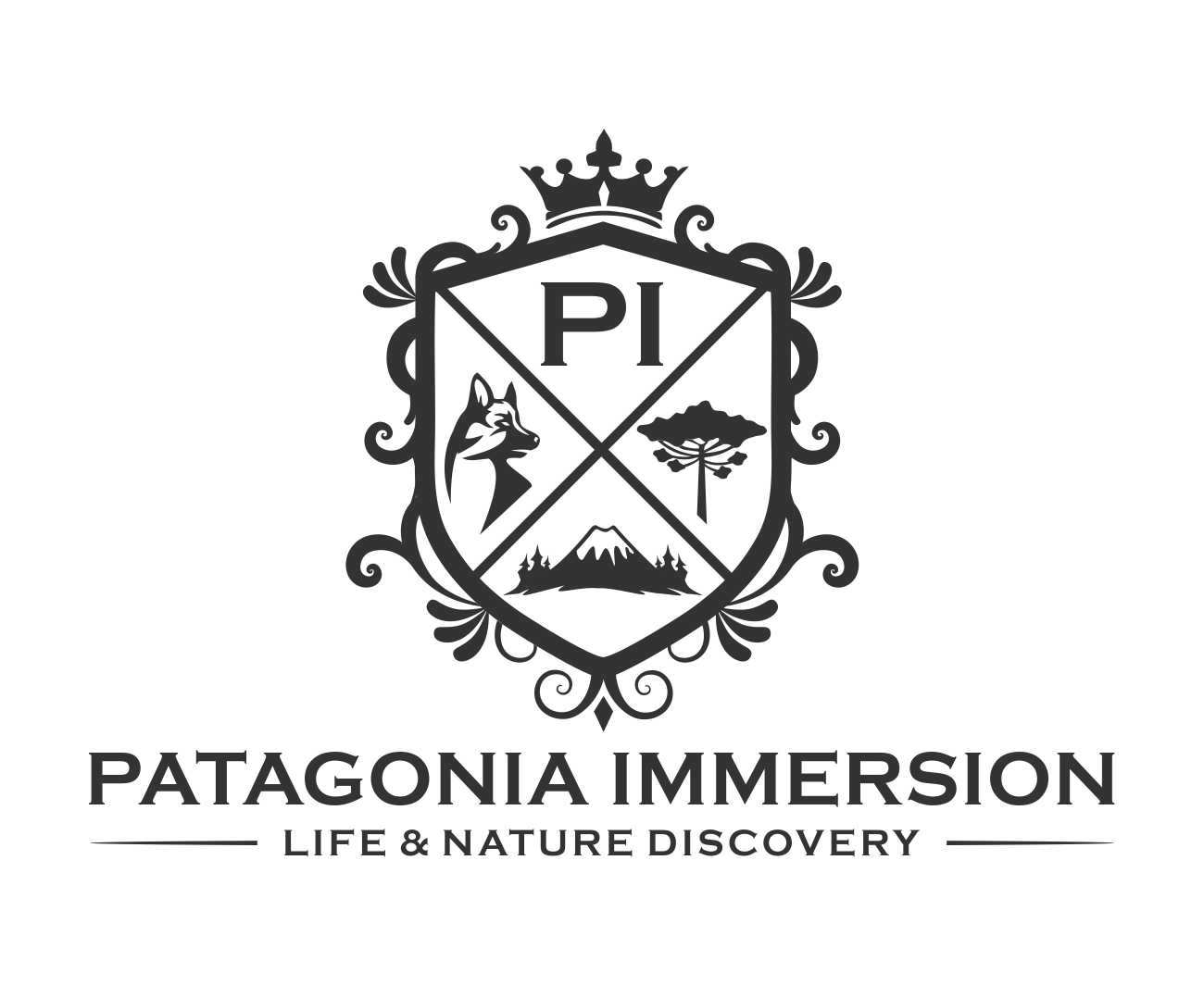 Design a challenging logo for Patagonia Immersion