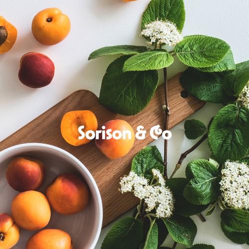 Logotype for Sorison & Co