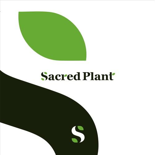 Organic, Plant Medicine, Marketplace