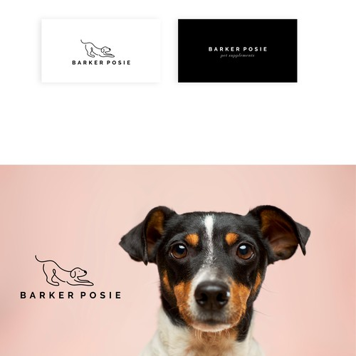 Minimal and eye-catching logo design for pet brand