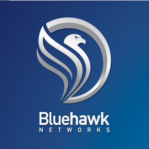 Logo design for Bluehawk networks