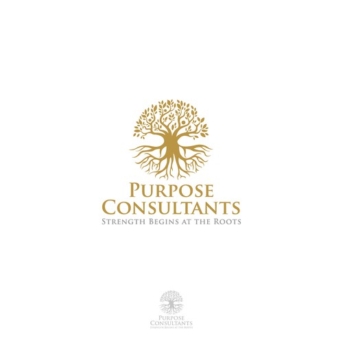 Logo concept for consultants