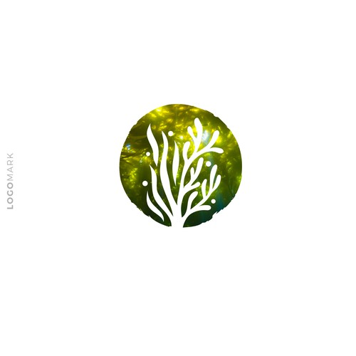 The Seaweed Effect