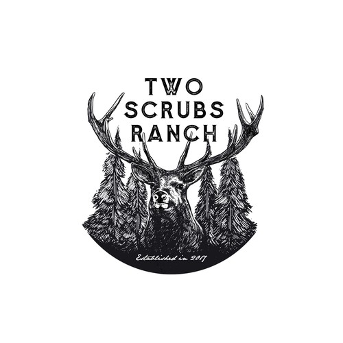 logo prposal for TWO SCRUBS RANCH